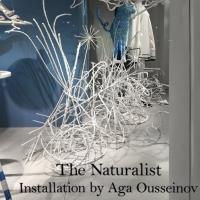 The Naturalist, Spring 2016